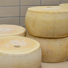 barilla fromage usine de sauce